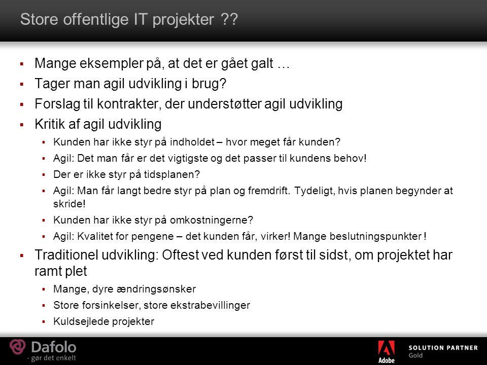 Store offentlige IT projekter