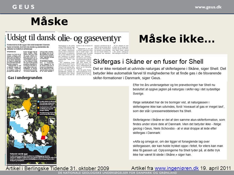 Måske Måske ikke… Artikel i Berlingske Tidende 31. oktober 2009