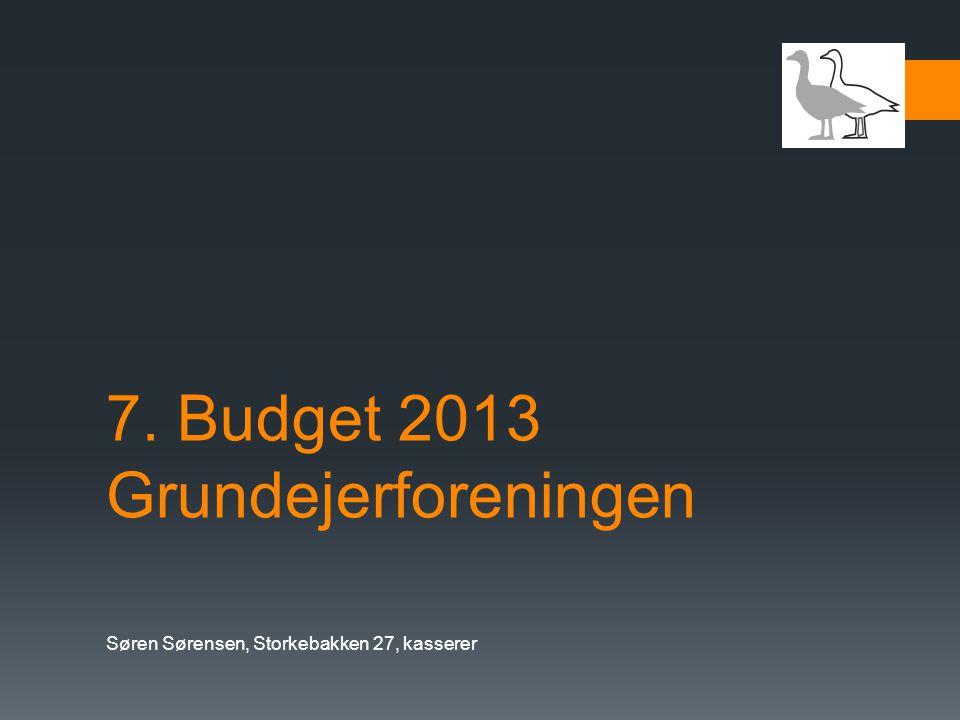 7. Budget 2013 Grundejerforeningen
