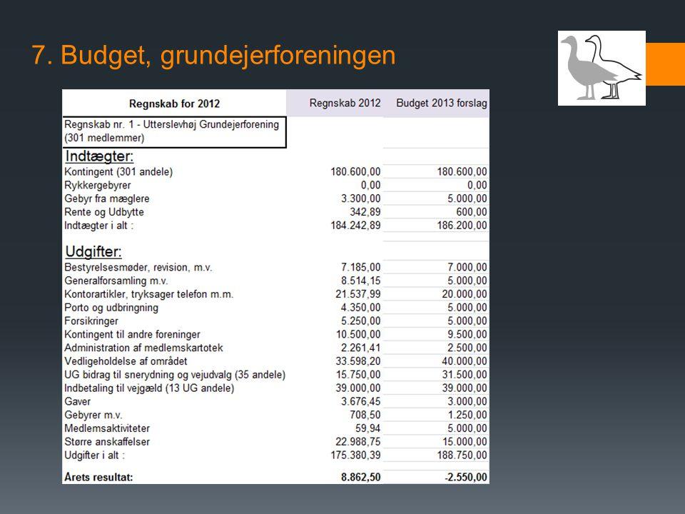 7. Budget, grundejerforeningen