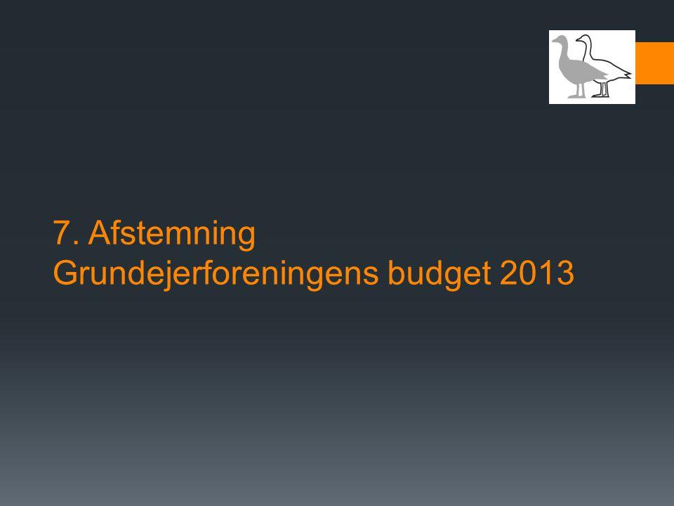 7. Afstemning Grundejerforeningens budget 2013