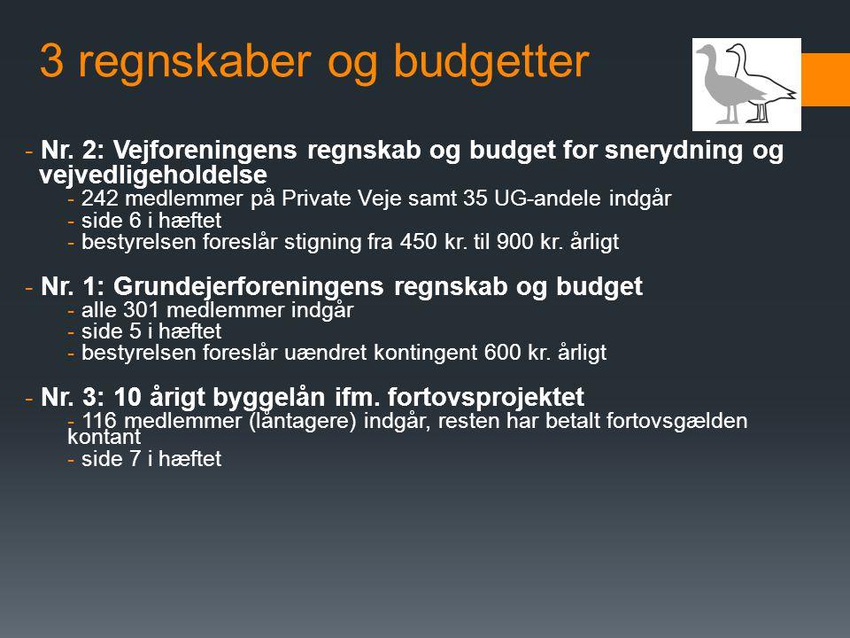 3 regnskaber og budgetter