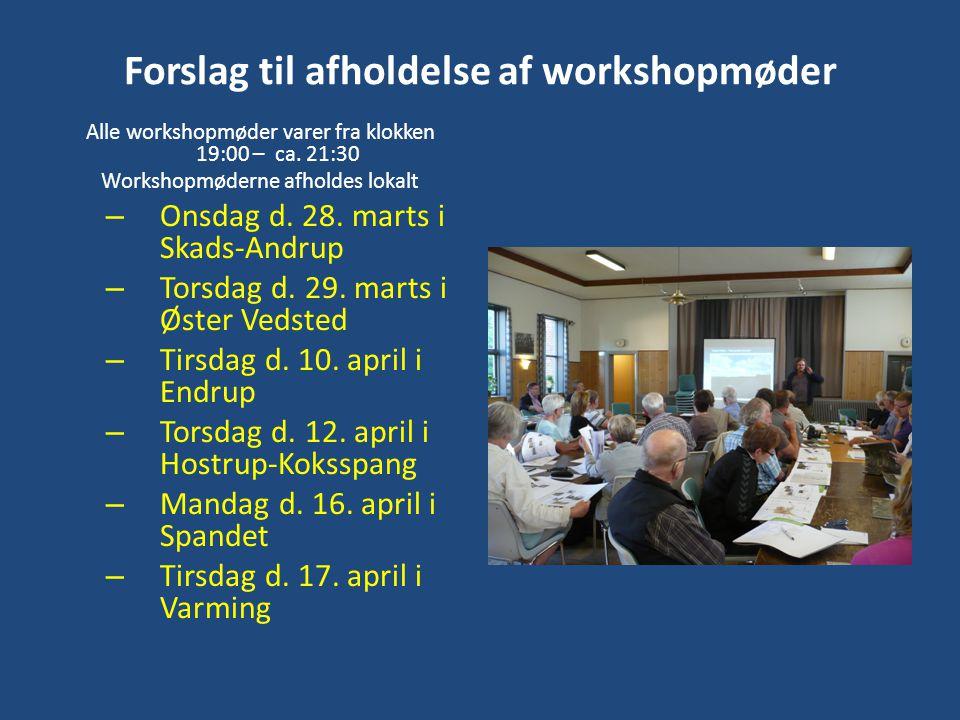 Forslag til afholdelse af workshopmøder