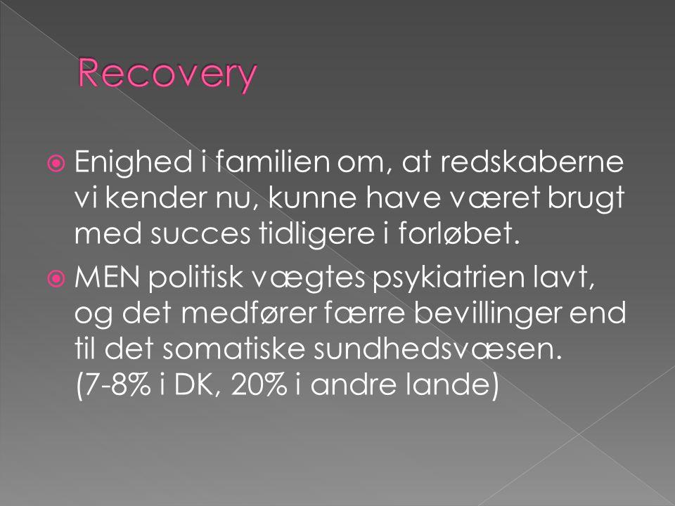 Recovery Enighed i familien om, at redskaberne vi kender nu, kunne have været brugt med succes tidligere i forløbet.