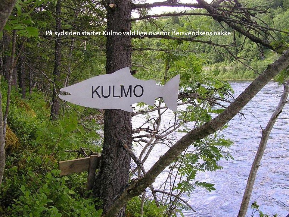 På sydsiden starter Kulmo vald lige overfor Bersvendsens nakke