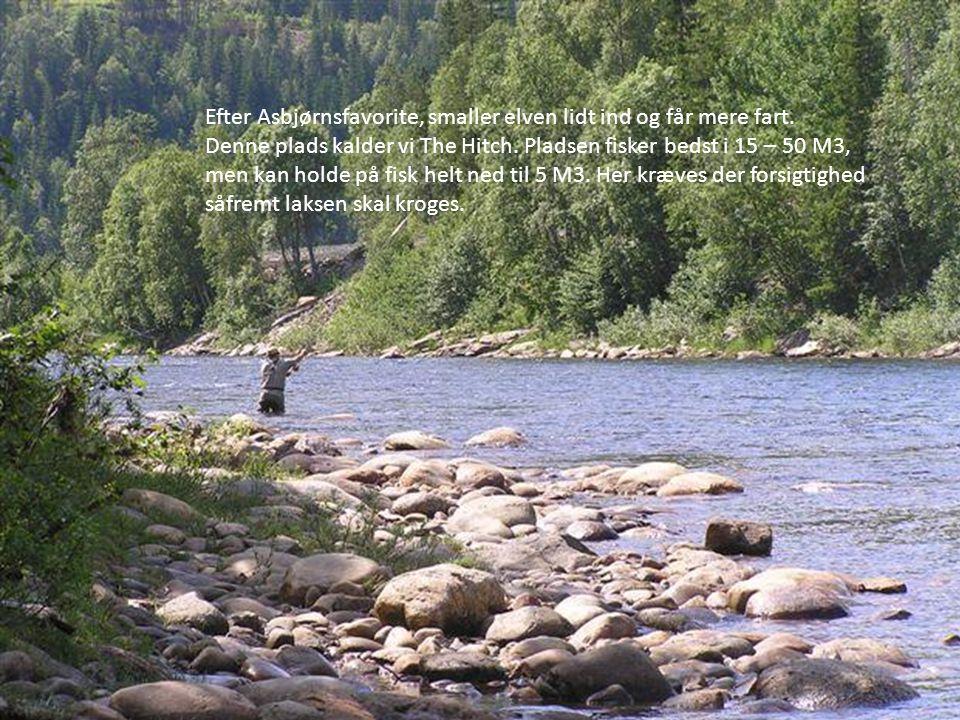 Efter Asbjørnsfavorite, smaller elven lidt ind og får mere fart.