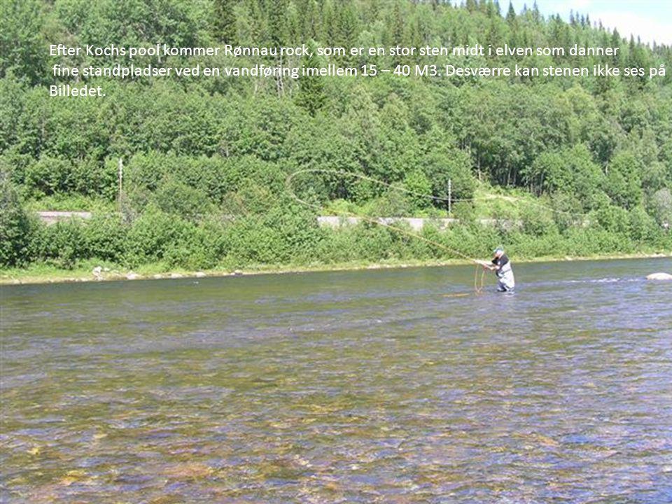 Efter Kochs pool kommer Rønnau rock, som er en stor sten midt i elven som danner