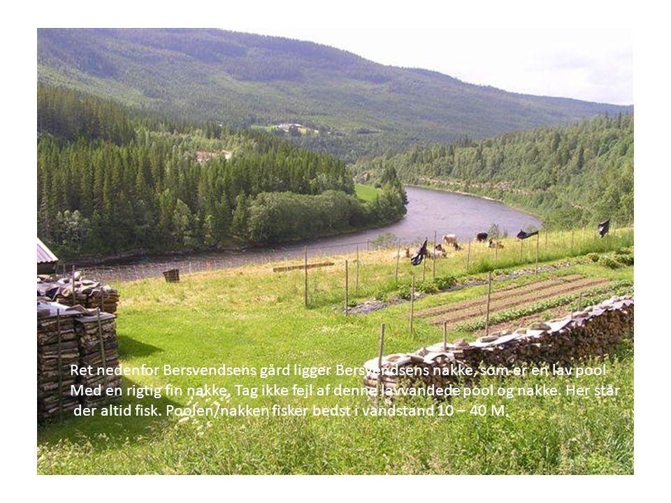 Ret nedenfor Bersvendsens gård ligger Bersvendsens nakke, som er en lav pool