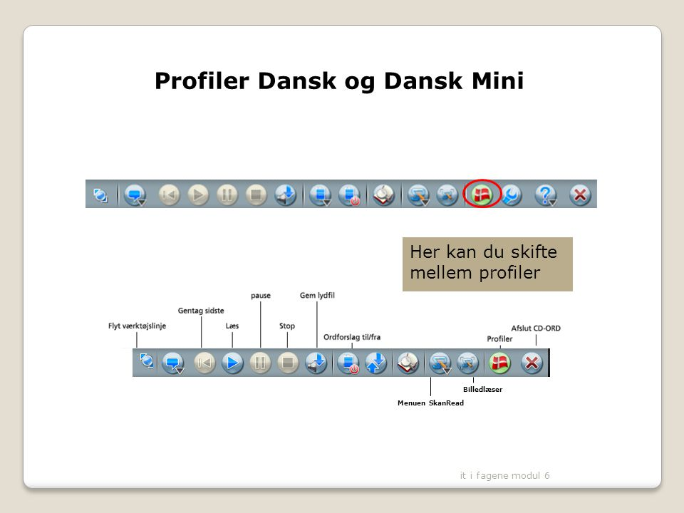 Profiler Dansk og Dansk Mini