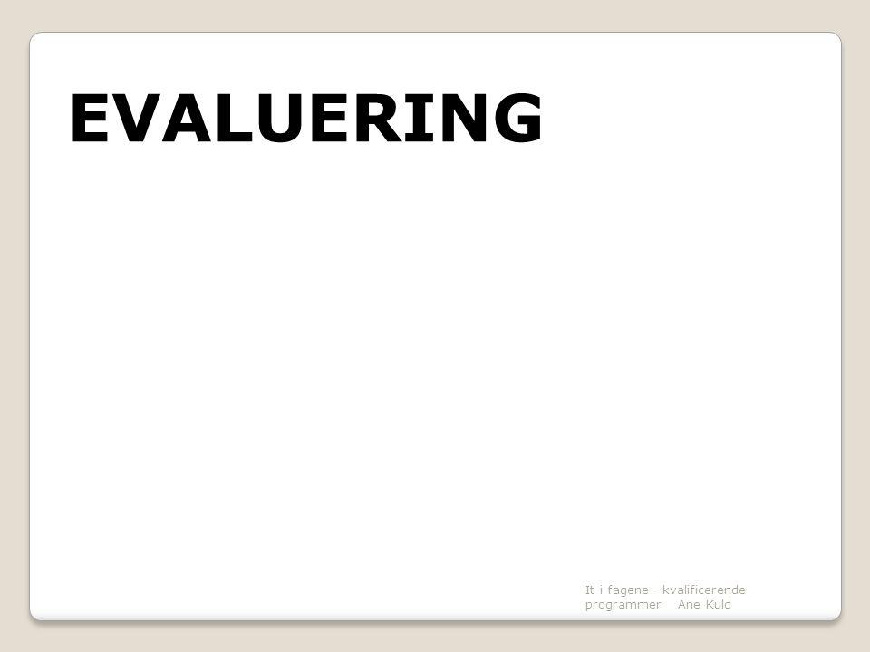 EVALUERING It i fagene - kvalificerende programmer Ane Kuld