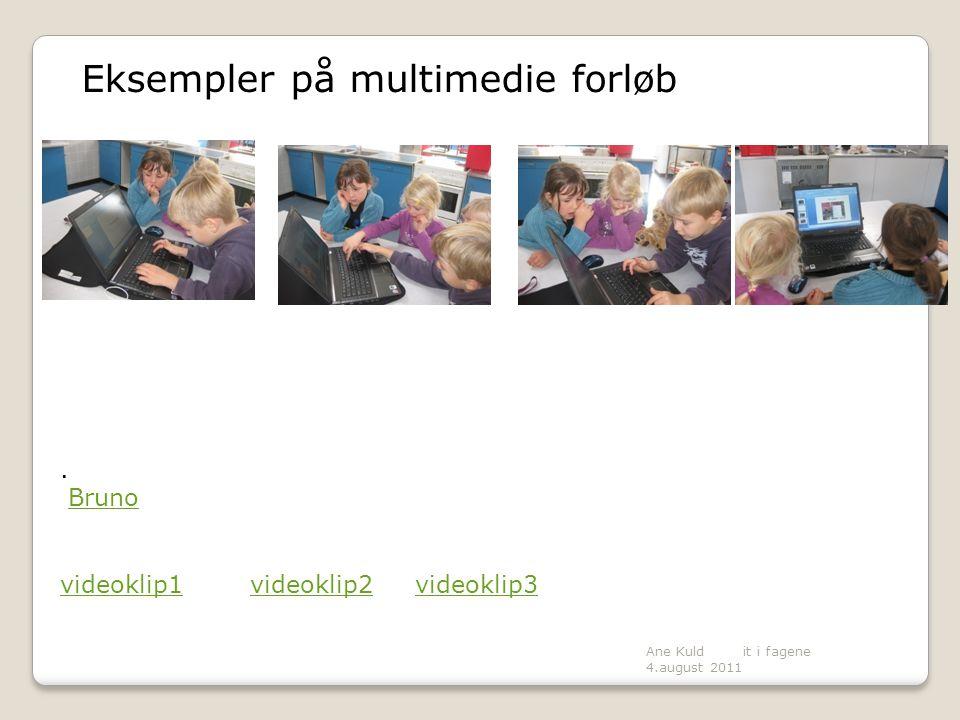 Eksempler på multimedie forløb