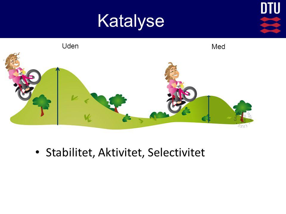 Katalyse Uden Med Stabilitet, Aktivitet, Selectivitet