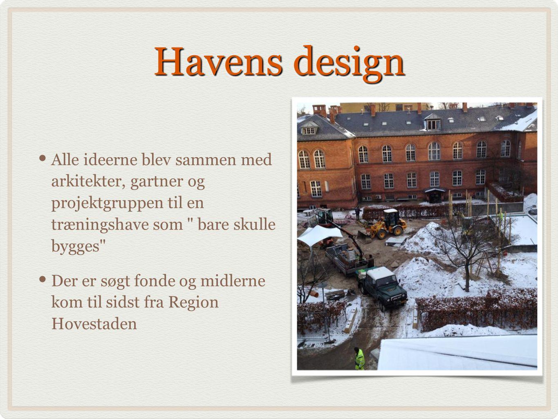 Havens design Alle ideerne blev sammen med arkitekter, gartner og projektgruppen til en træningshave som bare skulle bygges