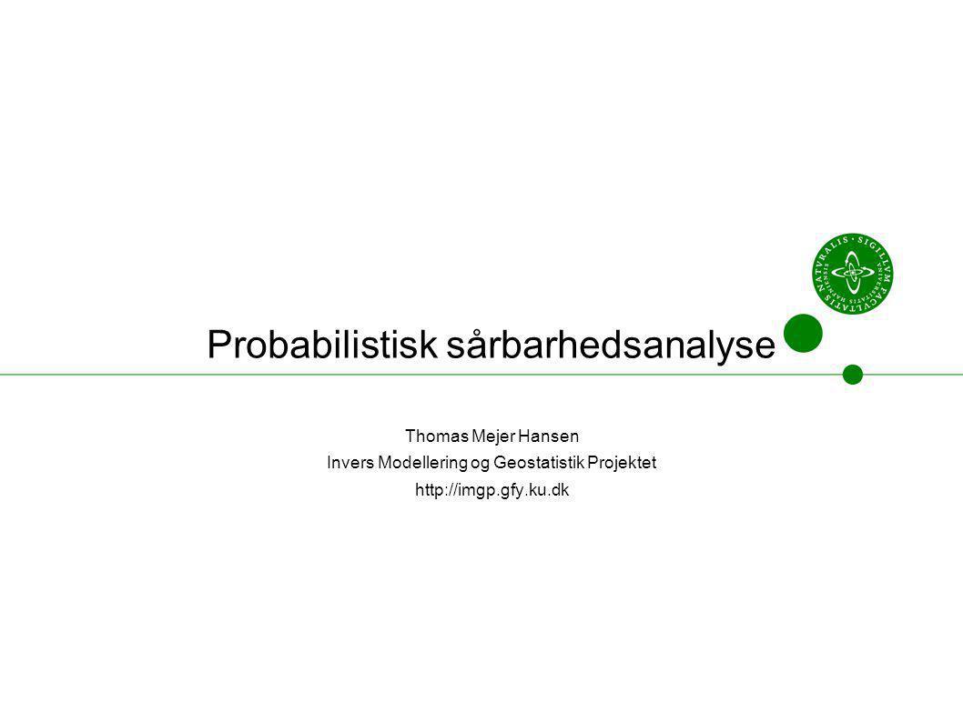Probabilistisk sårbarhedsanalyse