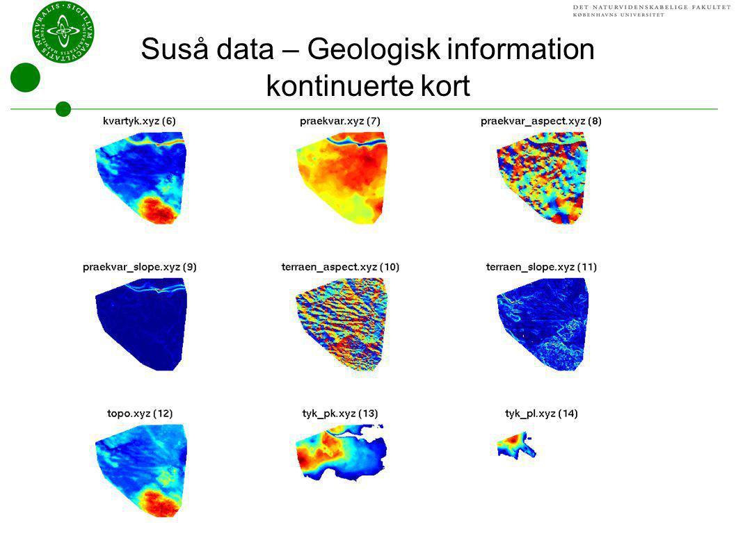 Suså data – Geologisk information kontinuerte kort