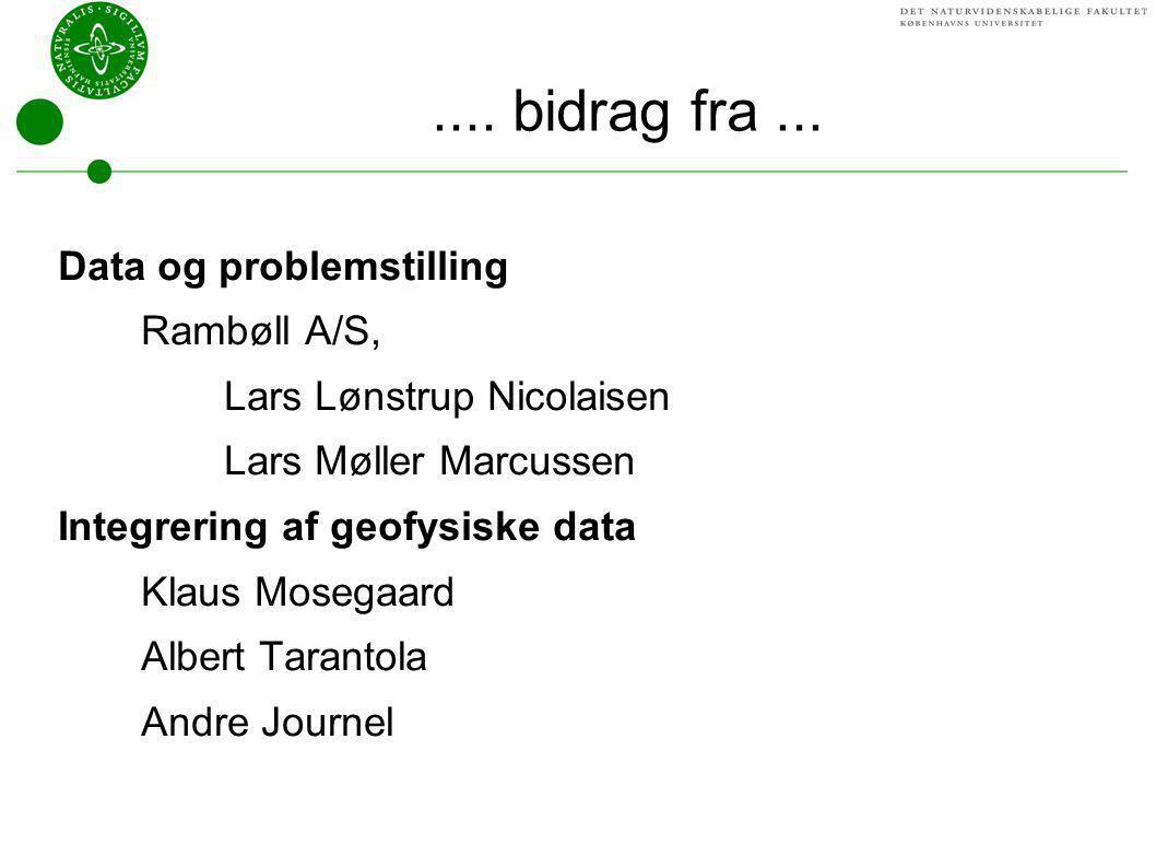 .... bidrag fra ... Data og problemstilling Rambøll A/S,