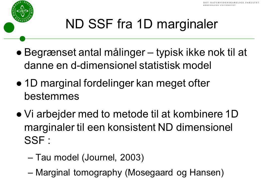 ND SSF fra 1D marginaler Begrænset antal målinger – typisk ikke nok til at danne en d-dimensionel statistisk model.