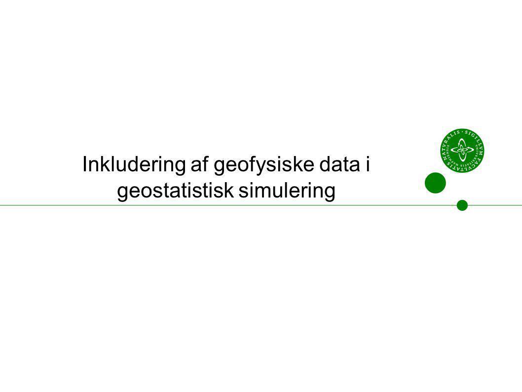 Inkludering af geofysiske data i geostatistisk simulering