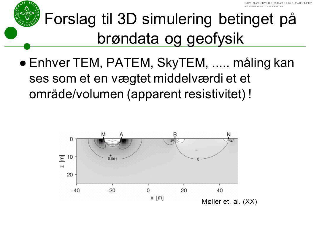 Forslag til 3D simulering betinget på brøndata og geofysik