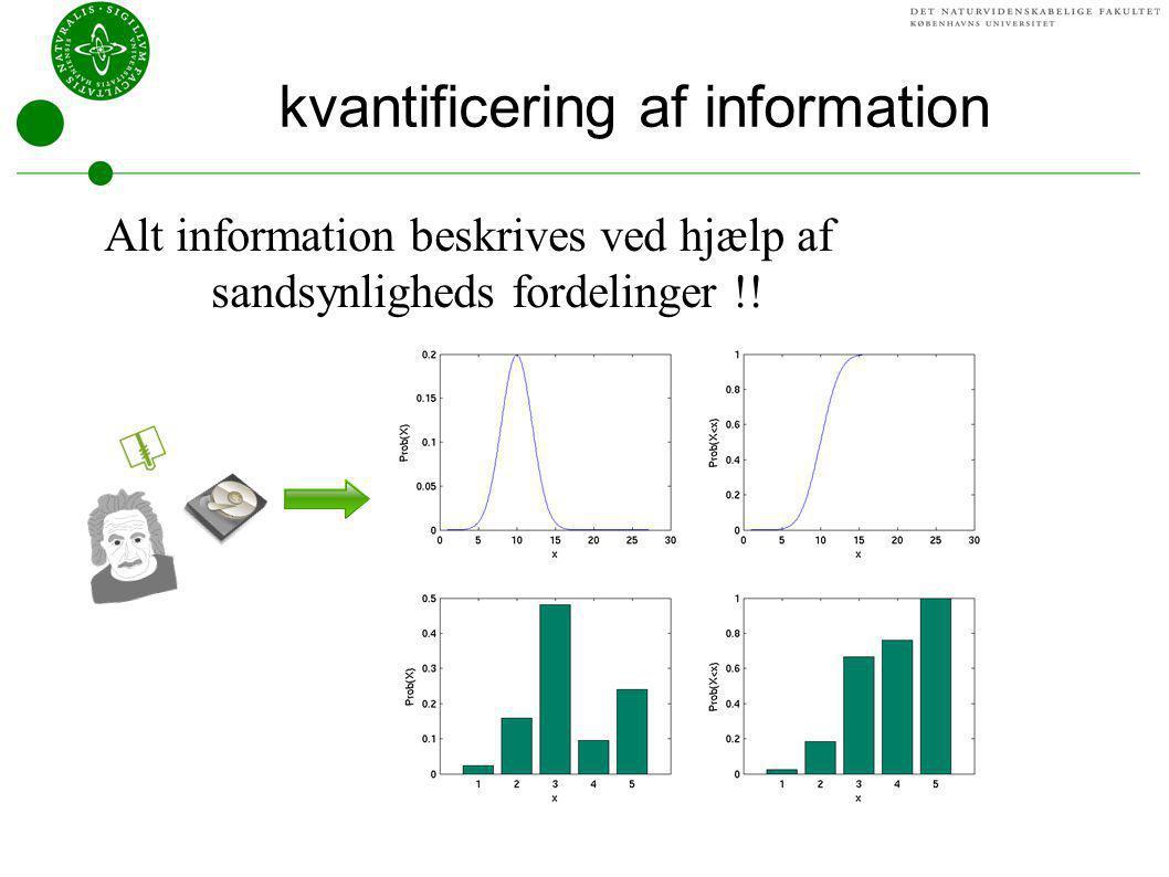 kvantificering af information
