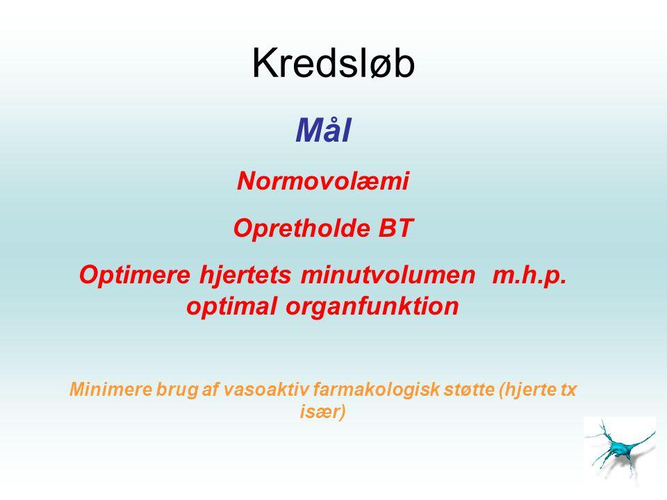 Kredsløb Mål Normovolæmi Opretholde BT