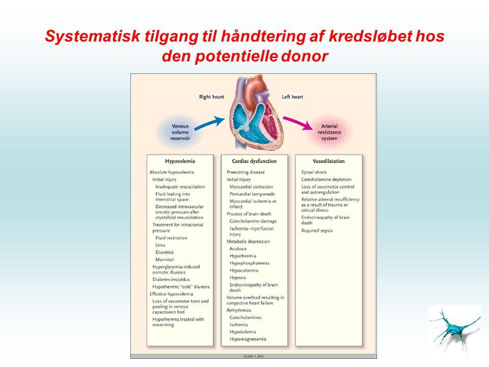 Systematisk tilgang til håndtering af kredsløbet hos den potentielle donor
