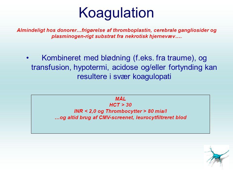 Koagulation Almindeligt hos donorer…frigørelse af thromboplastin, cerebrale gangliosider og plasminogen-rigt substrat fra nekrotisk hjernevæv….