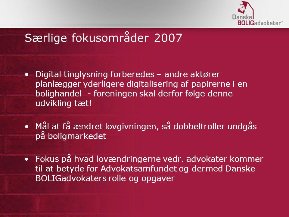 Særlige fokusområder 2007