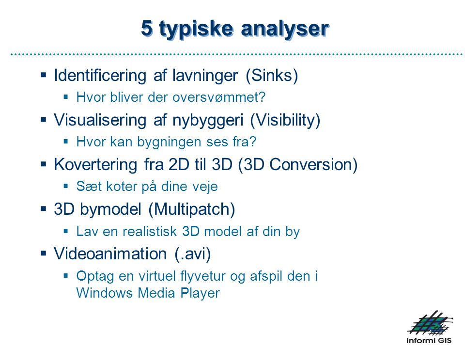 5 typiske analyser Identificering af lavninger (Sinks)