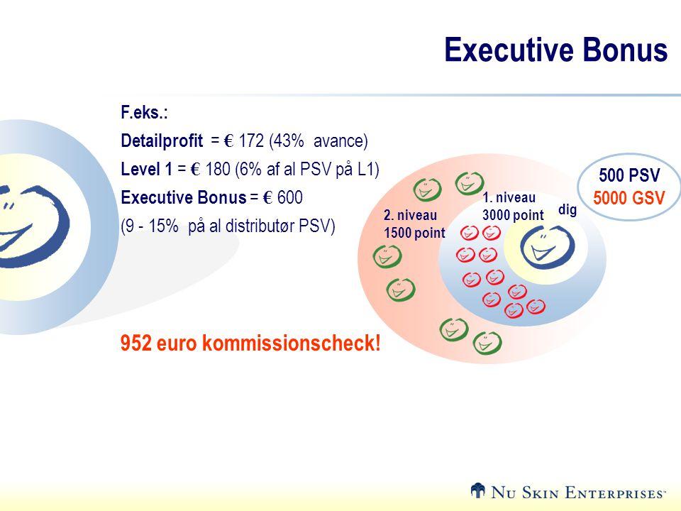 Executive Bonus 952 euro kommissionscheck! F.eks.: