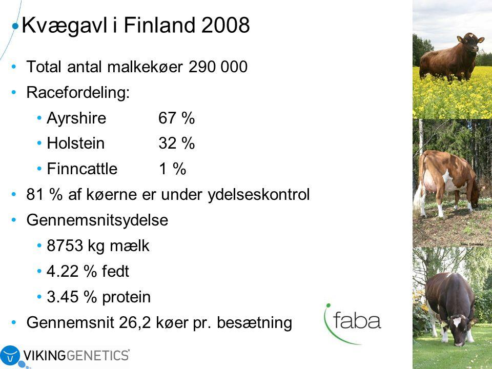 Kvægavl i Finland 2008 Total antal malkekøer 290 000 Racefordeling: