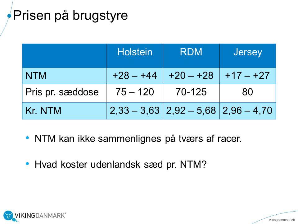 Prisen på brugstyre Holstein RDM Jersey NTM +28 – +44 +20 – +28