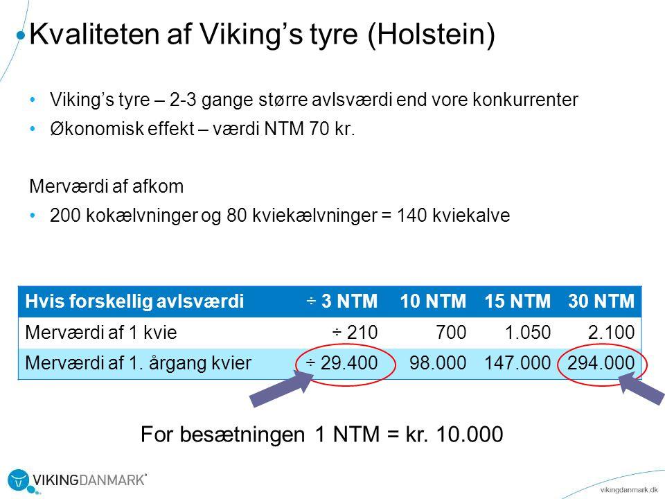 Kvaliteten af Viking's tyre (Holstein)