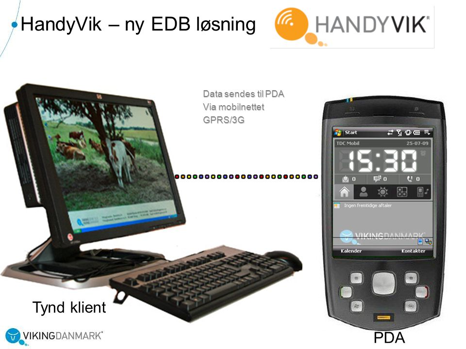 HandyVik – ny EDB løsning