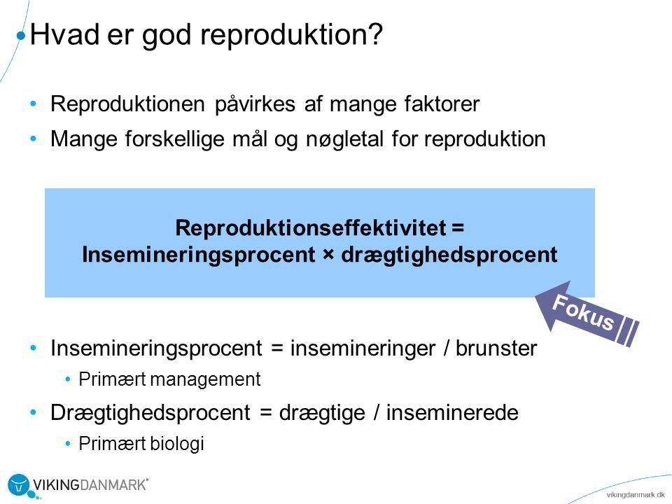 Hvad er god reproduktion