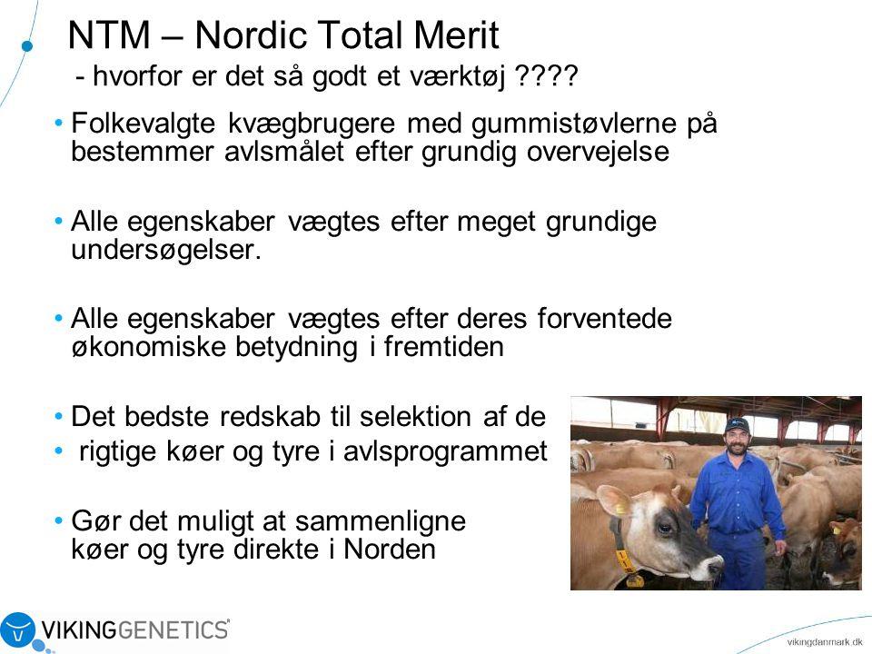 NTM – Nordic Total Merit - hvorfor er det så godt et værktøj