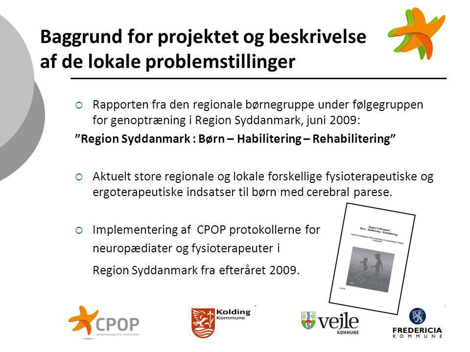 Baggrund for projektet og beskrivelse af de lokale problemstillinger