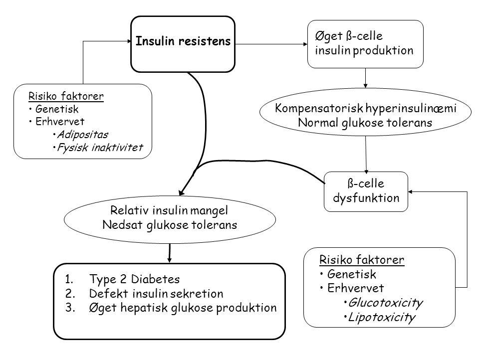 Kompensatorisk hyperinsulinæmi Normal glukose tolerans