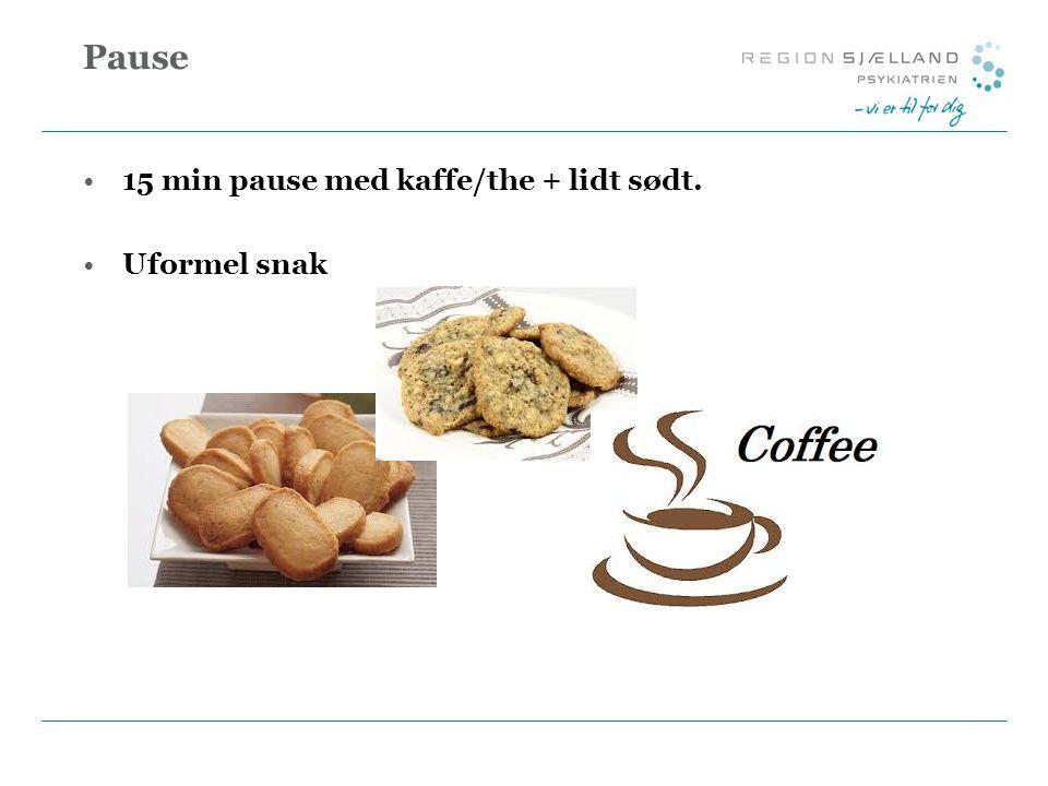 Pause 15 min pause med kaffe/the + lidt sødt. Uformel snak