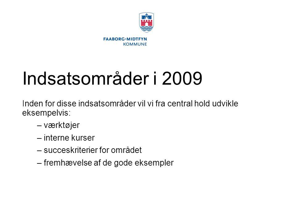 Indsatsområder i 2009 Inden for disse indsatsområder vil vi fra central hold udvikle eksempelvis: værktøjer.