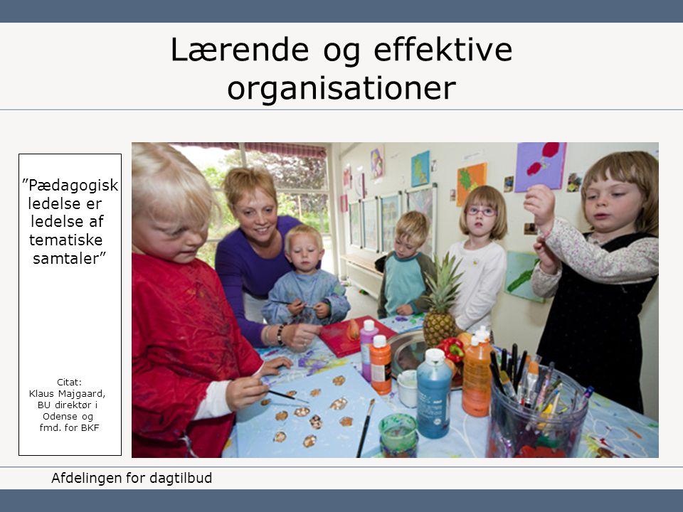 Lærende og effektive organisationer