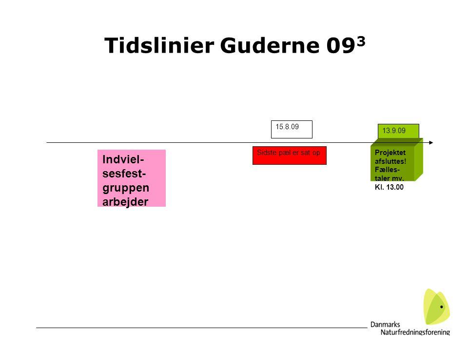 Tidslinier Guderne 093 Indviel-sesfest-gruppen arbejder 15.8.09