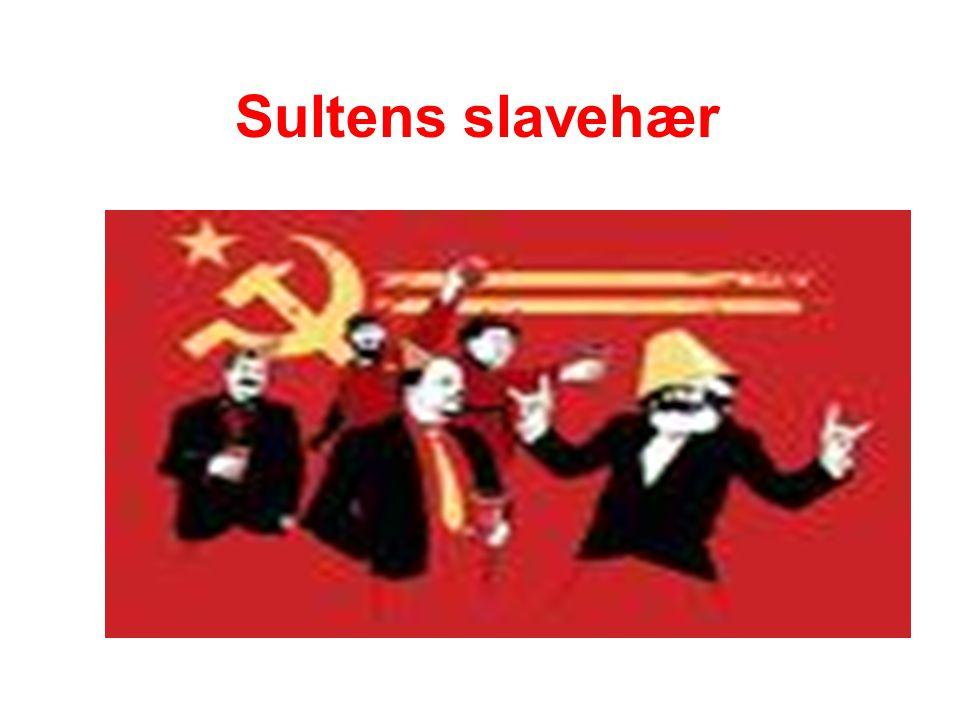 Sultens slavehær