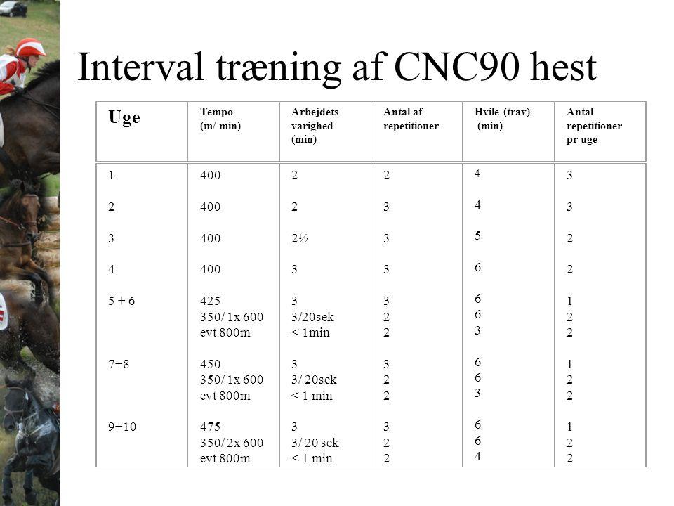 Interval træning af CNC90 hest