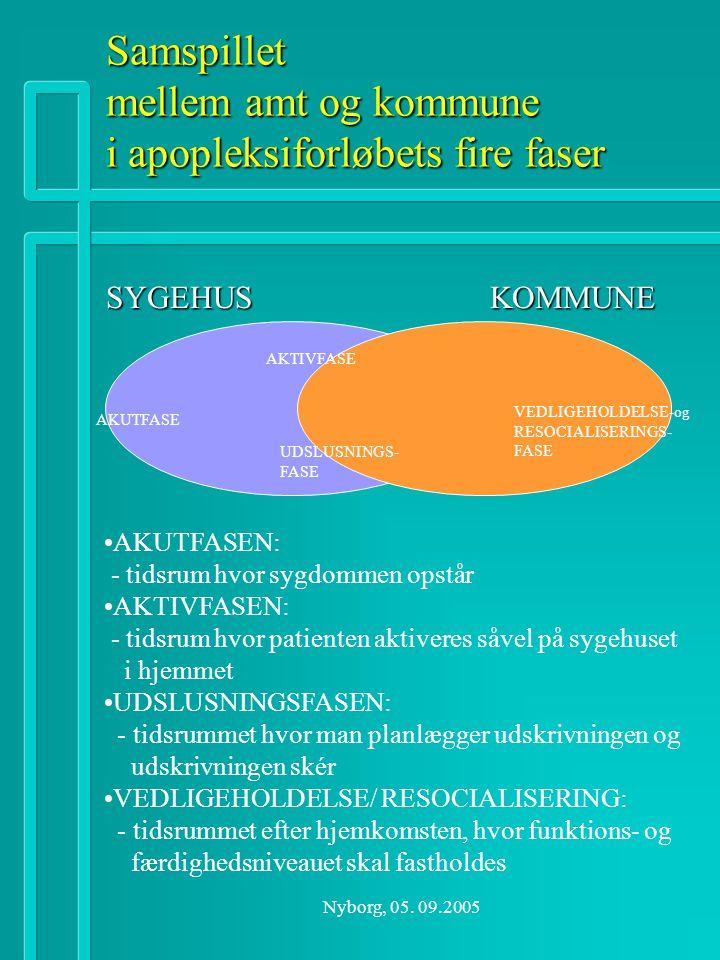 Samspillet mellem amt og kommune i apopleksiforløbets fire faser