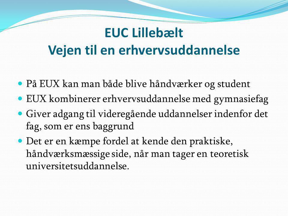 EUC Lillebælt Vejen til en erhvervsuddannelse