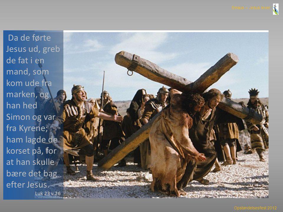 Da de førte Jesus ud, greb de fat i en mand, som kom ude fra marken, og han hed Simon og var fra Kyrene; ham lagde de korset på, for at han skulle bære det bag efter Jesus.