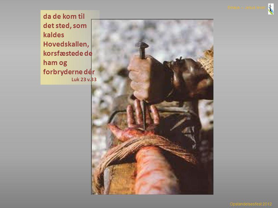 da de kom til det sted, som kaldes Hovedskallen, korsfæstede de ham og forbryderne dér
