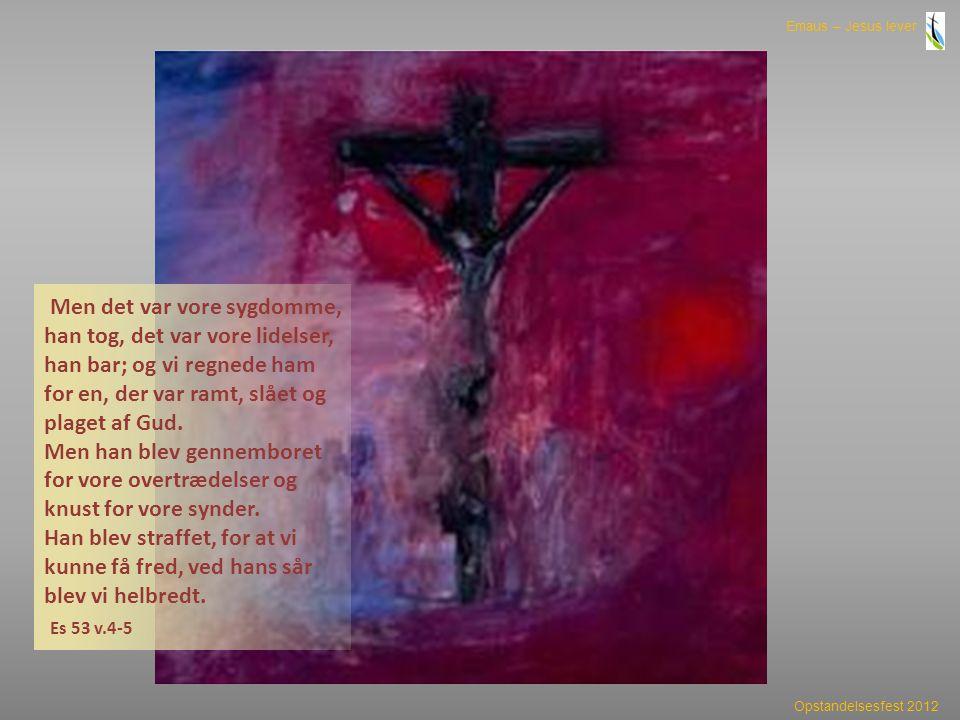 Men det var vore sygdomme, han tog, det var vore lidelser, han bar; og vi regnede ham for en, der var ramt, slået og plaget af Gud.
