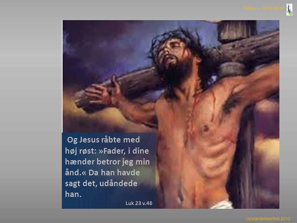 Og Jesus råbte med høj røst: »Fader, i dine hænder betror jeg min ånd